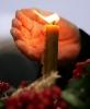 Запали свічу пам'яті